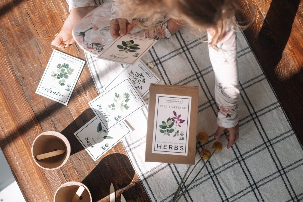 Spring Home refresh- Spring Refresh- Ashley Pletcher Home- Herb Garden- Things to do with Kids